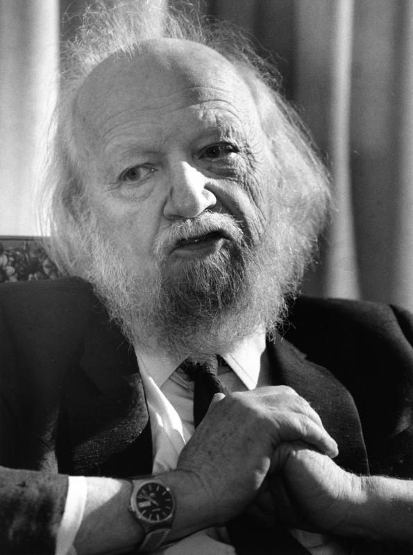 critical essays on william golding William golding's lord of the flies essay examples - william golding's lord of the flies theme: most people perceive children as being innocent, precious beings some believe that they are angelic.